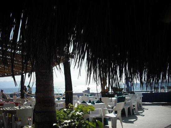 Las Palmas by the Sea: area
