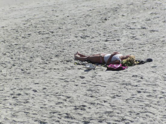 Bermuda Sands Motel: Beautiful People Tanning on the shore