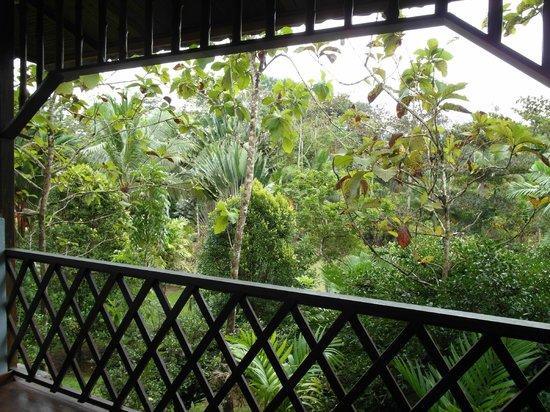 Sepilok Jungle Resort: Porchview