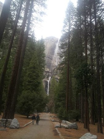 Yosemite Valley: Yosemite Falls