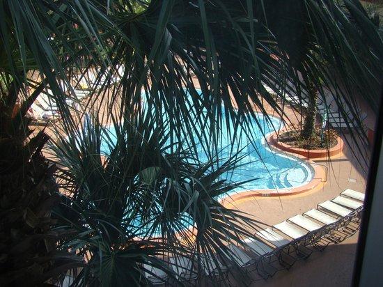 Radisson Resort Orlando-Celebration: Vista desde la habitación (con palmera de por medio)
