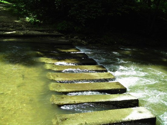 Forestville State Park : Crossing the Root river is tricky