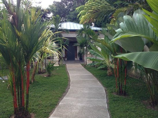 Prana Rainforest Retreat: I felt like a king walking up to our villa each day.