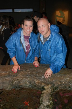 Seattle Aquarium : Loved being able to touch the stafish