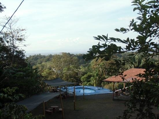 Backpackers Manuel Antonio: Great spot!