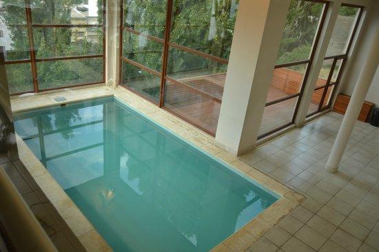 Terrazas Apartments: pool