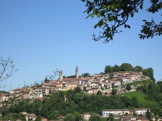 Il Castello di Uviglie: Moncalvo, vista zoomata dal giardino