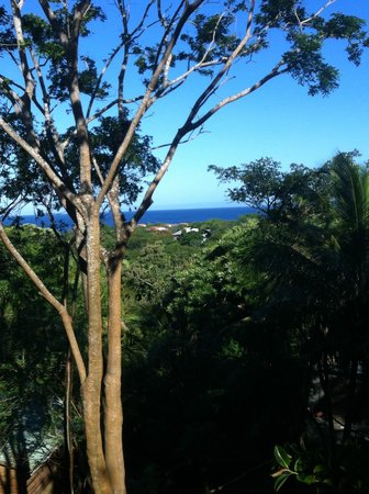 Roatan Bed & Breakfast Apartments: Awesome View