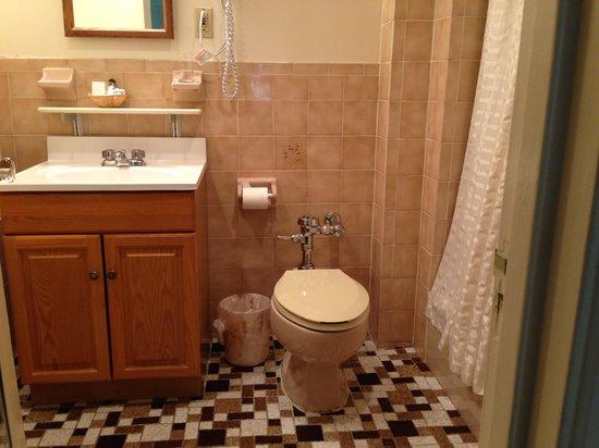 Salisbury Hotel: Bathroom