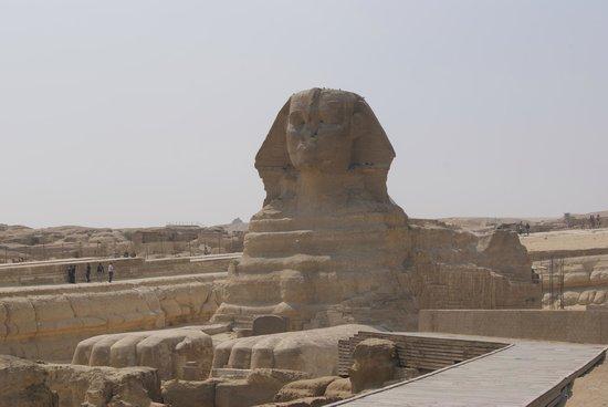 Sphinx : 1