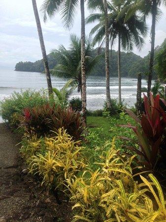 Morromico : The Bay