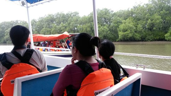 Usukan Cove Lodge : Kota Belud River Cruise
