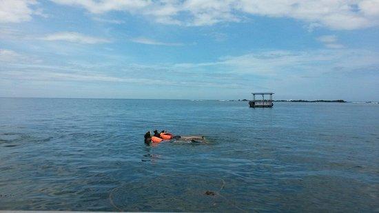 Usukan Cove Lodge: Snorkel at Pandan pandan island