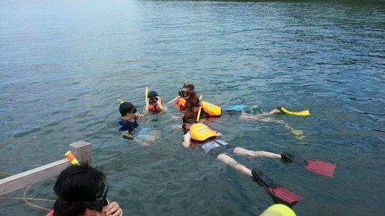 Usukan Cove Lodge: Snorkeling