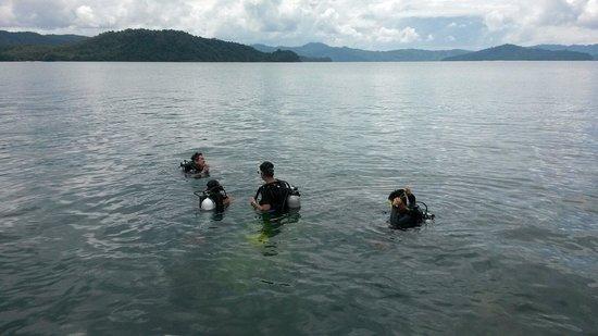 Usukan Cove Lodge: Diving