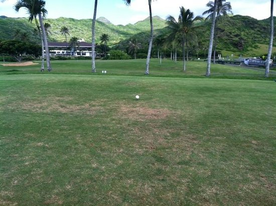 Hawaii Kai Golf Course: 1st Tee box...burned out...NO GRASS
