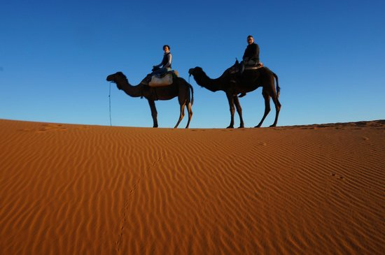 Riad Nezha: Camel Trek