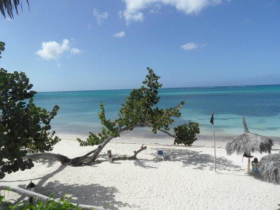 Paradisus Rio de Oro Resort & Spa : Royal Service Beach