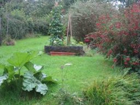 Llanafan, UK: Rear garden