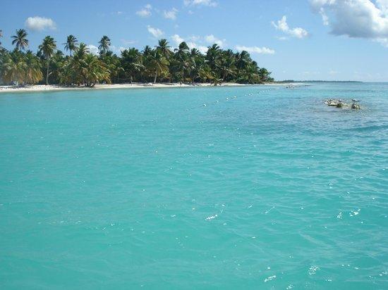 Saona Island: Земля