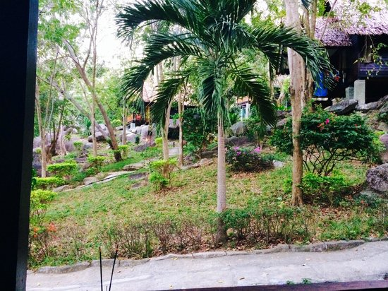 Thongtapan Resort : The view from our bungalow, its a jungle