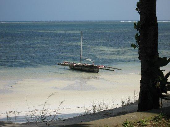 Serena Beach Resort & Spa: Dhow on Beach