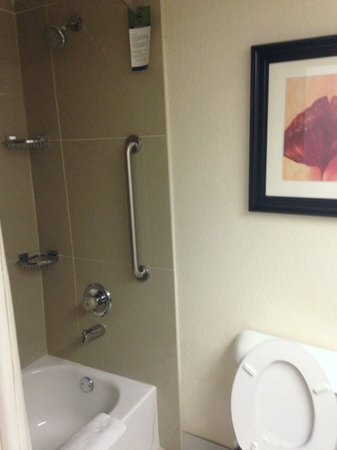 Comfort Suites Lawrenceville : Guest Bathroom