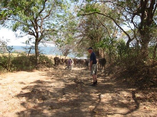 Finca San Juan de la Isla: wandeling vlakbij de finca