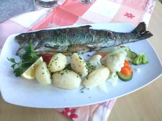Pension Restaurant Rosmarie: trota
