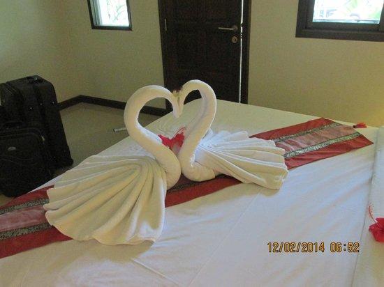 Lamai Inn 99: lovely swans