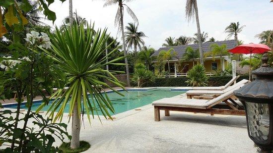 Happy Mind Resort: La piscine
