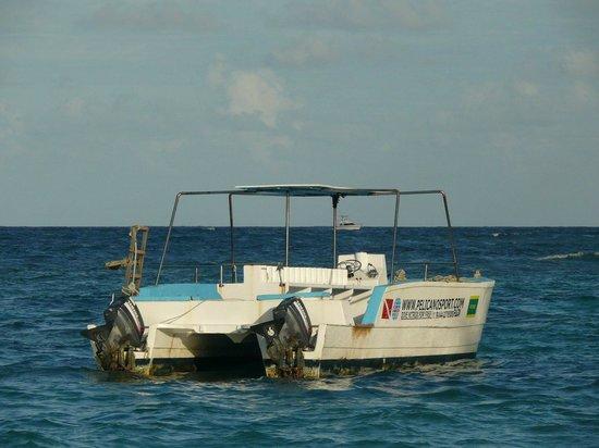 Pelicano Water Sports: un bateau du club