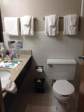 West Bay Beach, a Holiday Inn Resort : Small bathroom. Not completely renovated but I guess is doable at least