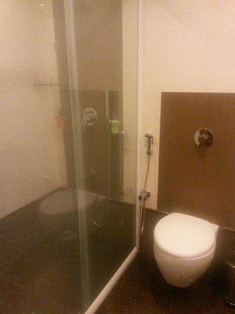 Regency Madurai by GRT Hotels: shower