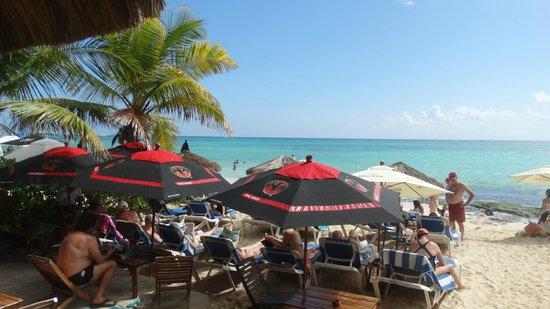 Fusion Bar & Restaurant : Praia