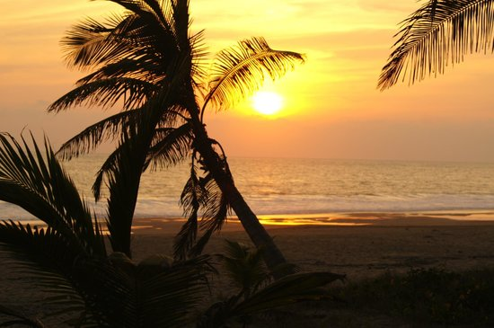 Playa Viva : Sunset