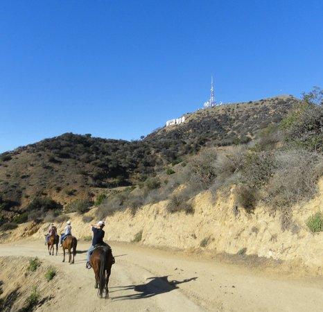Highland Gardens Hotel : Balade à cheval pas loin