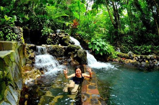 Hidden Valley Springs Resort: Pool and waterfalls