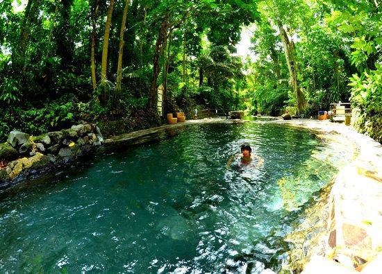 Hidden Valley Springs Resort: Pool