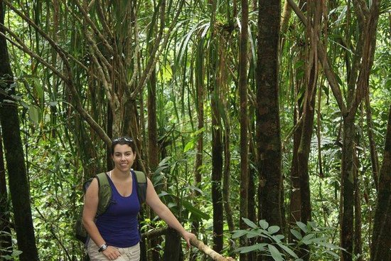 Colo-I-Suva Forest Park: hike out