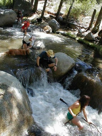 Angelus Oaks, CA: River hike on the Santa Ana River off Seven Oaks Road