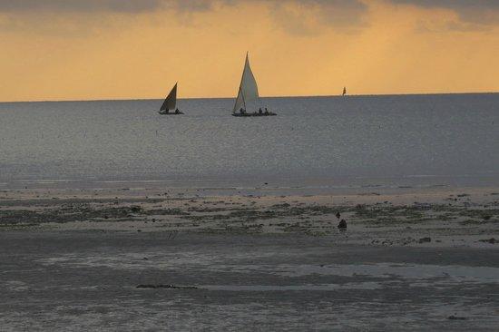 Capricorn Beach Cottages: Sunset