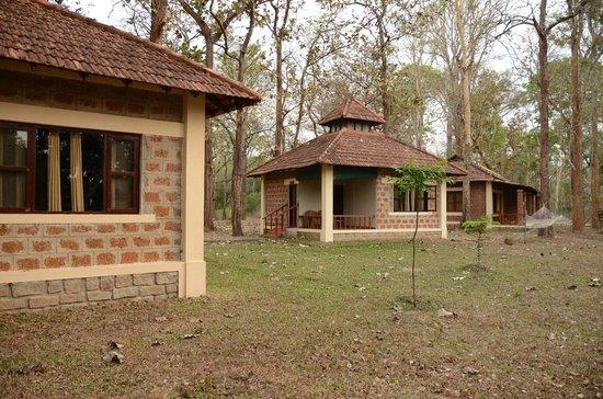 Dubare Elephant Camp : cottages