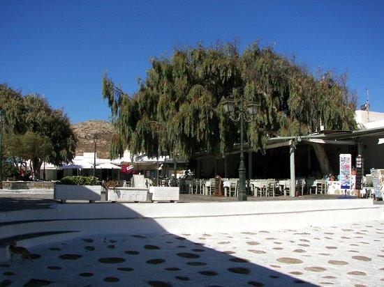 Monastery of Panayia Tourliani: Tavernas