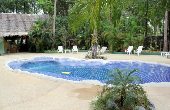 Papillon Bungalows : Swimming pool