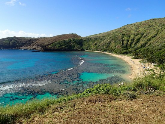 Hanauma Bay Nature Preserve: 湾上からの眺望