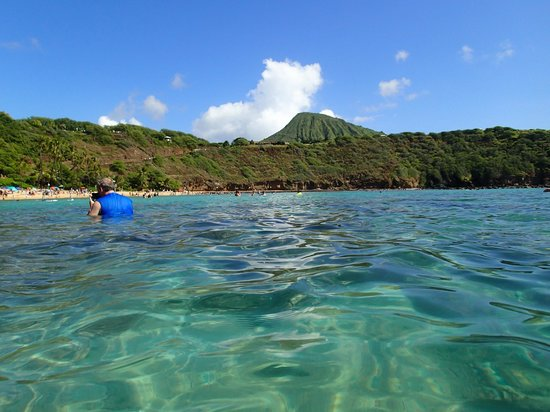 Hanauma Bay Nature Preserve: 湾内