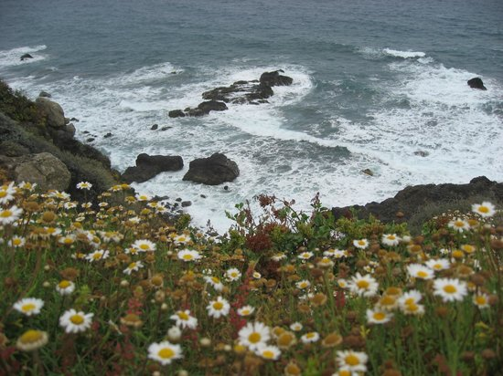 Playa de Benijo: 3