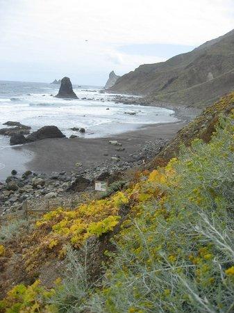 Playa de Benijo: 5