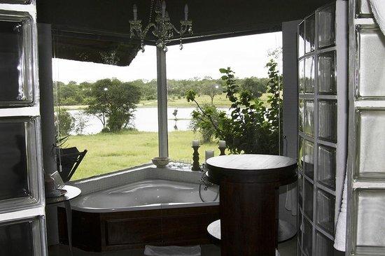 Chitwa Chitwa Private Game Reserve : View from shower
